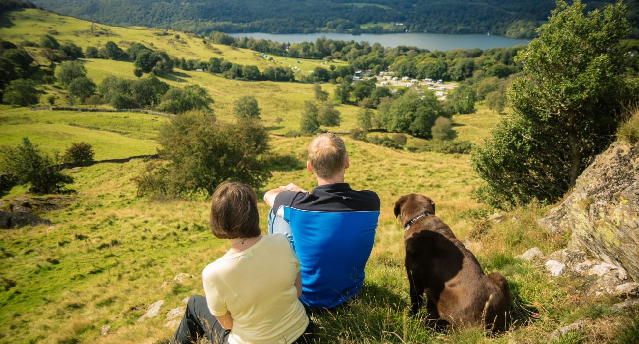 Dog Friendly Caravan Parks & Accommodation For Your Holiday Plan